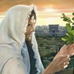 Catholic homily for Wednesday of the 12th week in Ordinary Time Cycle I (1)